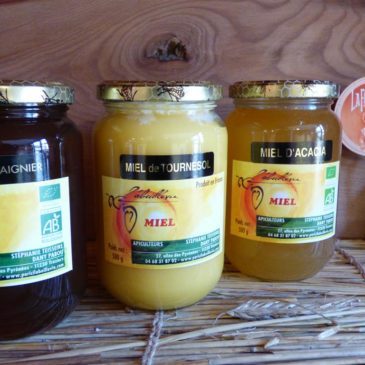 Miel de l'Aude – 500 g