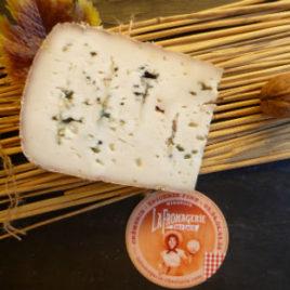 moulis-chevre-bleu-mirepoix-ariege-fromage