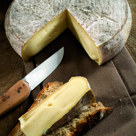 fromages saint nectaire